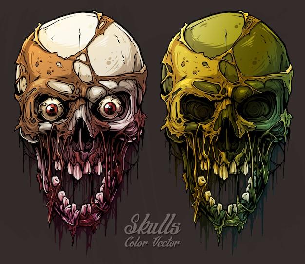 Detailed graphic colorful human skulls set Premium Vector
