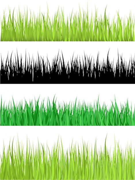 Detailed grass Free Vector