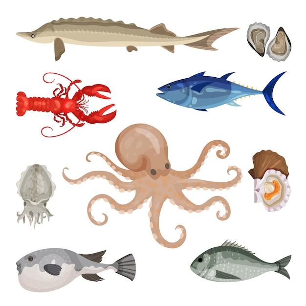 さまざまなシーフードの詳細なセット。食用水産物。海洋生物。魚、ロブスター、軟体動物 Premiumベクター