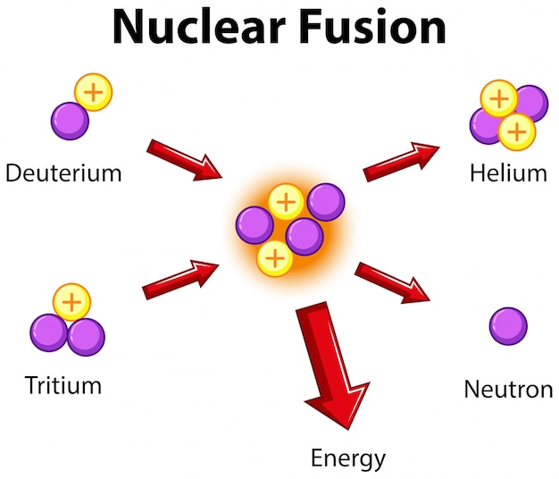 diagram showing nuclear fusion vector free download rh freepik com nuclear fusion diagram gcse nuclear fusion diagram explanation
