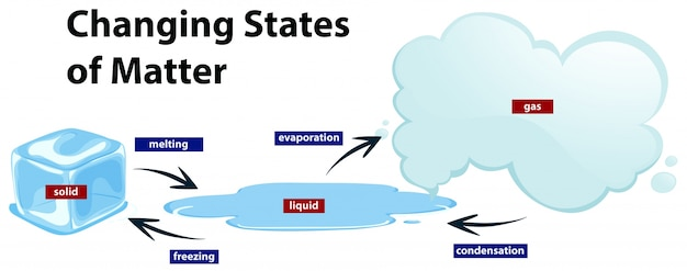 Diagram Showing The Changing States Of Matter Vector Free Download