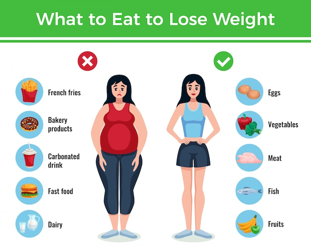Diet infographics layout with information about what to eat to lose and gain weight cartoon illustration Free Vector