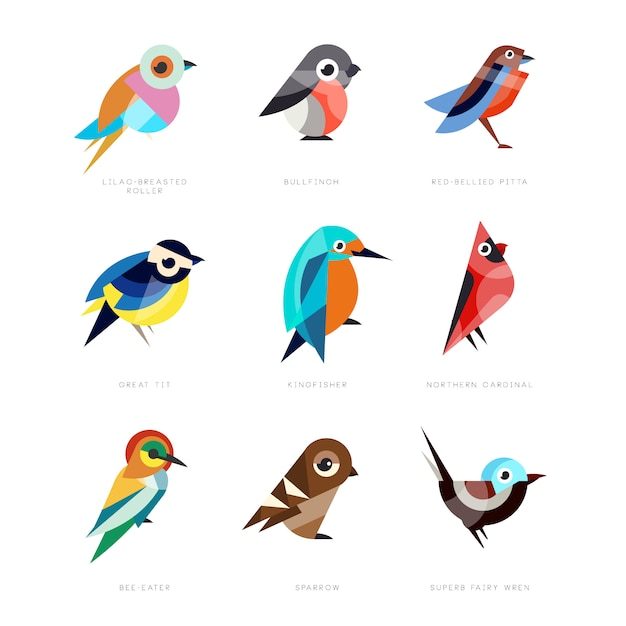 別の鳥セット、ライラックブレストローラー、ウソ、赤い腹ピッタ、シジュウカラ、カワセミ、北部枢機卿、ハチクイ、スズメ、見事な妖精ミソサザイイラスト Premiumベクター