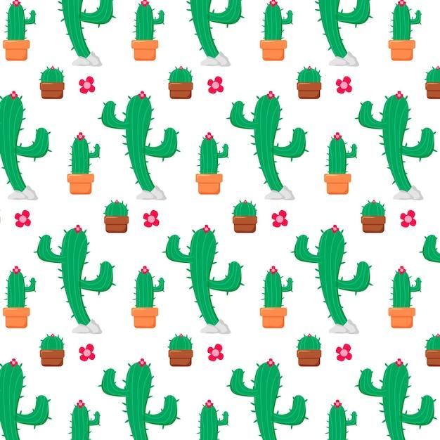 Modello di piante di cactus diversi Vettore gratuito