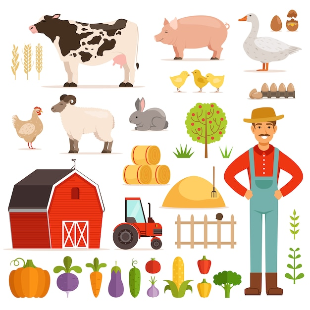 Different farm elements Premium Vector