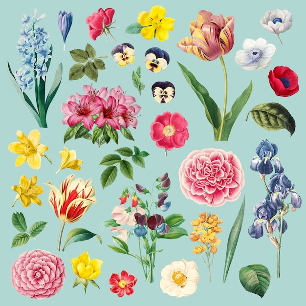 Different flowers painting set Free Vector