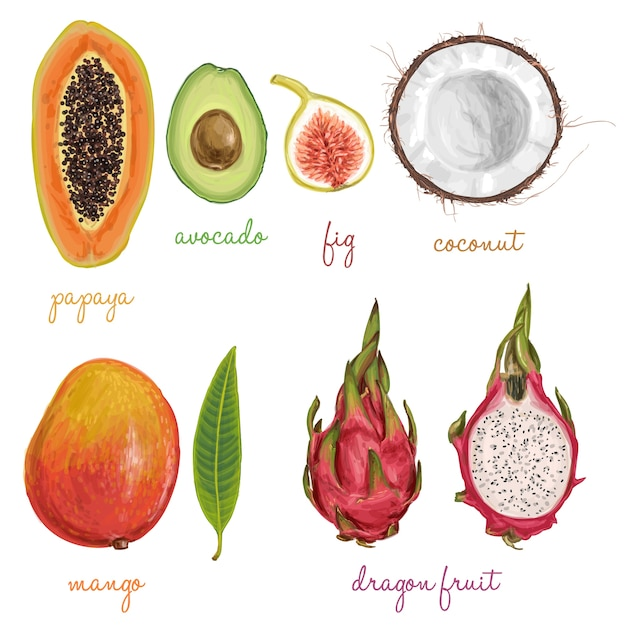 Different fruits painted with watercolors Free Vector