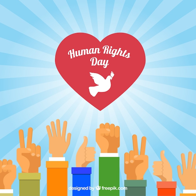 Different hands and a heart, human rights day