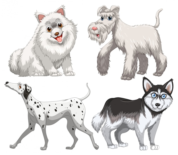 Different kind of canine Free Vector