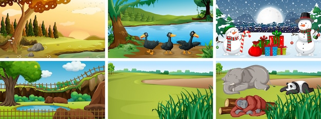 Different scenes with animals in the park Free Vector