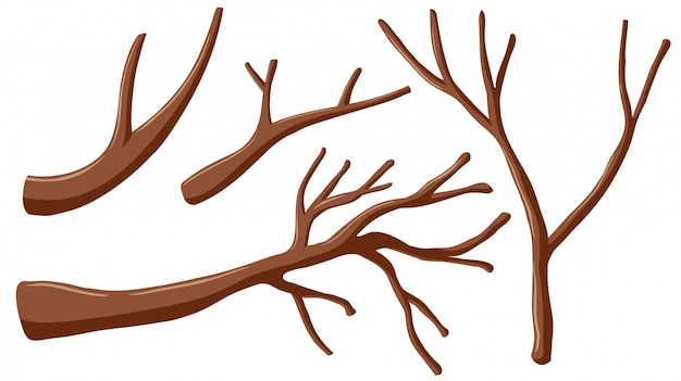 Different shapes of branches Free Vector