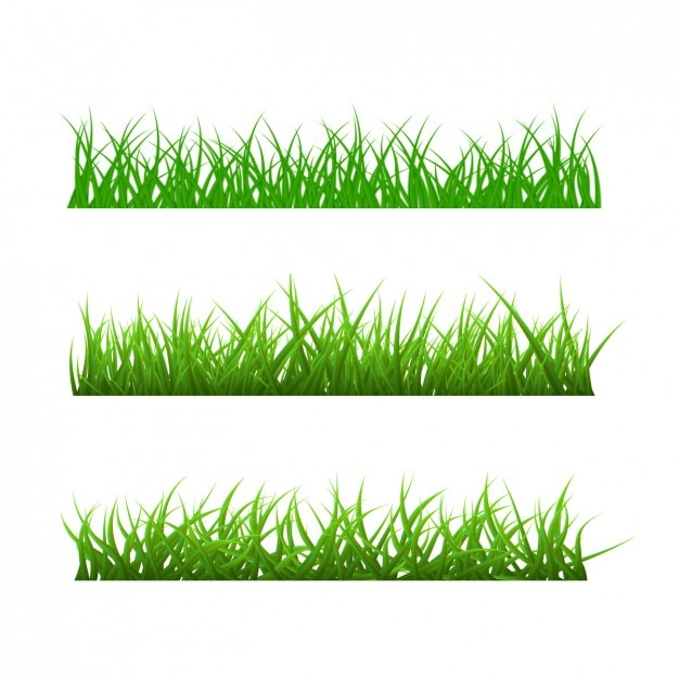 Different types of grass Free Vector