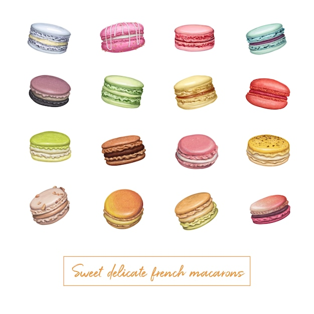 Different types of macarons hand drawn illustration Premium Vector