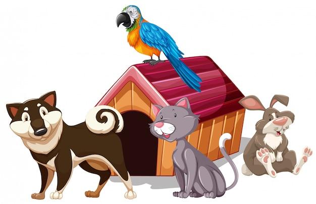家の周りのさまざまな種類のペット 無料ベクター