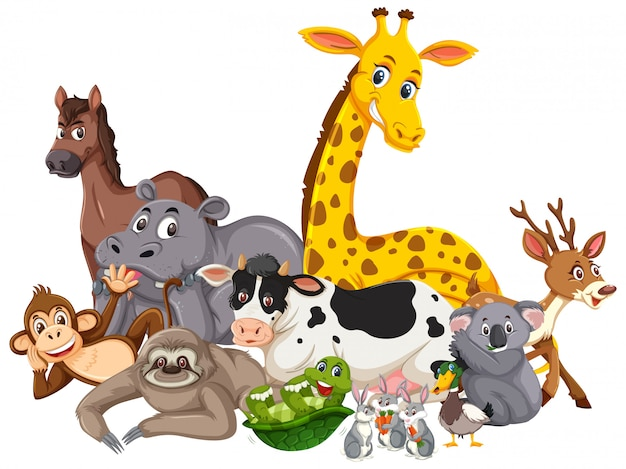 Different types of wild animals Premium Vector