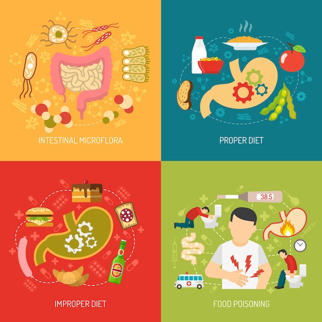 Digestion concept vector image Free Vector