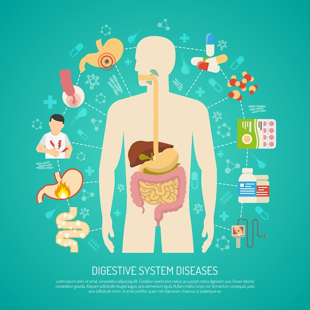 Digestive system diseases illustration Free Vector