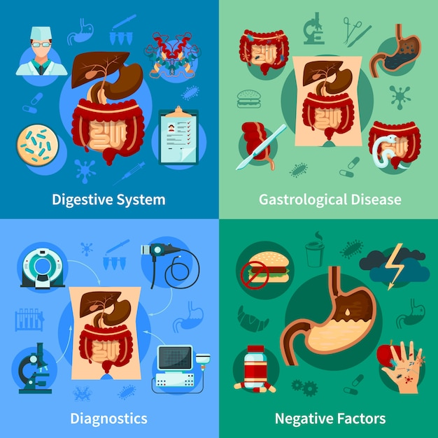 Digestive system icon set Free Vector