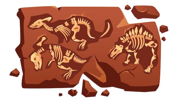 Dinosaur fossil bones, dino skeletons in stone Free Vector
