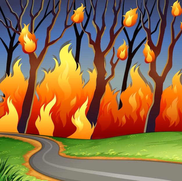 Disaster scene of forest fire Premium Vector