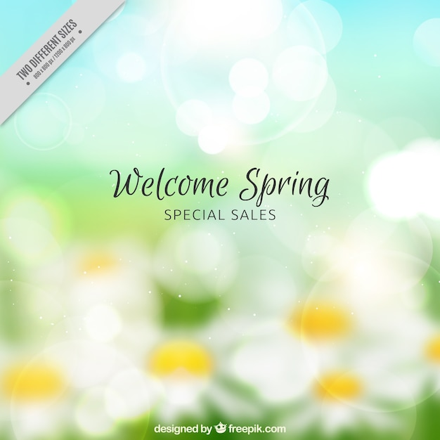 Discount background with blur daisies Free Vector