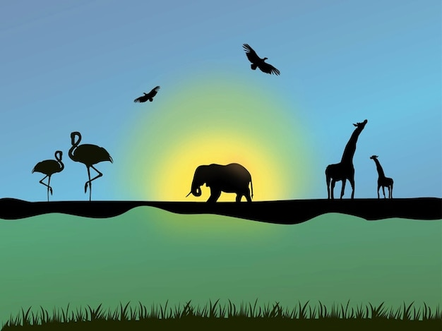 Discovery of african birds and animals\ vector