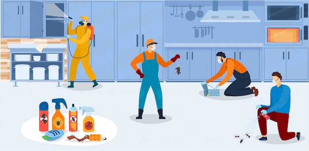 Disinfection in kitchen, workers of pest control service in uniform during sanitary processing of kitchen with insecticide chemical sprays  illustration. Premium Vector