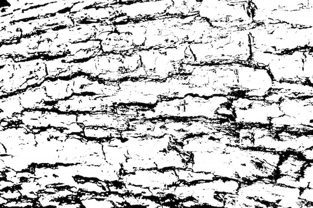 Distressed overlay texture of rough surface, cracked wood, tree bark. grunge background. Premium Vector