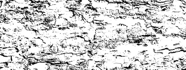 Distressed overlay texture of rough surface, cracked wood, tree bark. Premium Vector