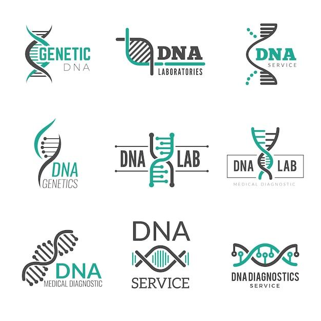 Dna logo. genetic science symbols helix biotech vector business identity