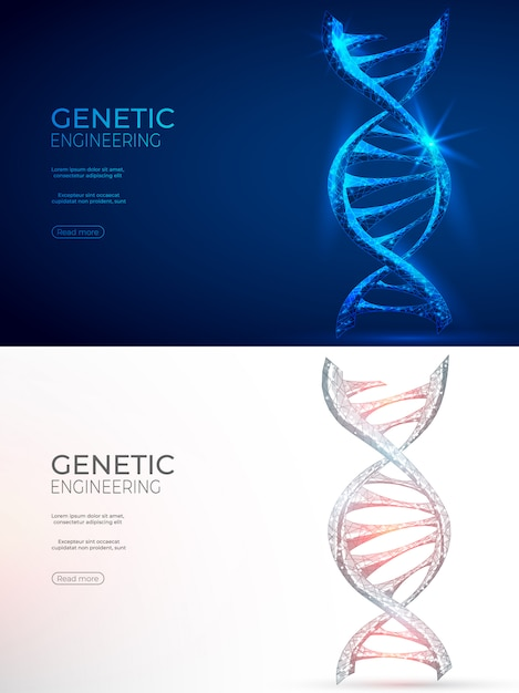 Dna polygonal genetic engineering abstract background. Premium Vector