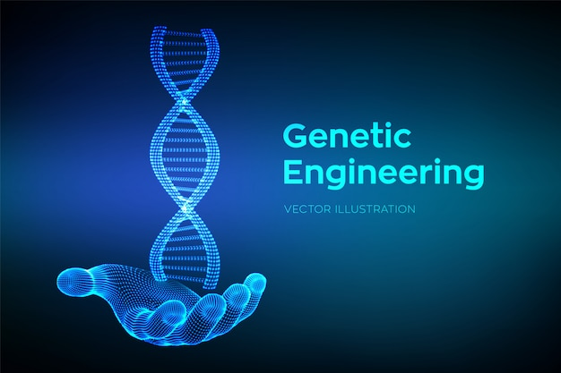 Dna sequence in hand. wireframe dna molecules structure mesh. dna code Premium Vector