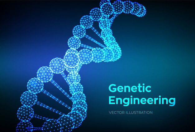 Dna sequence. wireframe dna molecules structure mesh. Premium Vector