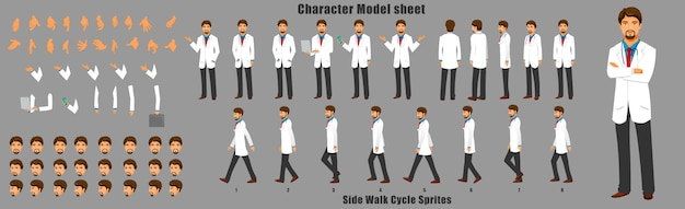 Doctor character model sheet with walk cycle animation sequence Premium Vector