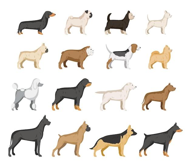 개 품종 컬렉션 흰색 절연입니다. 개 아이콘 모음 프리미엄 벡터