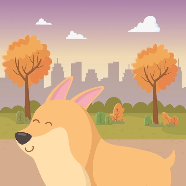 Dog cartoon Free Vector