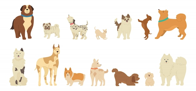 Dog character cute cartoon collection Premium Vector