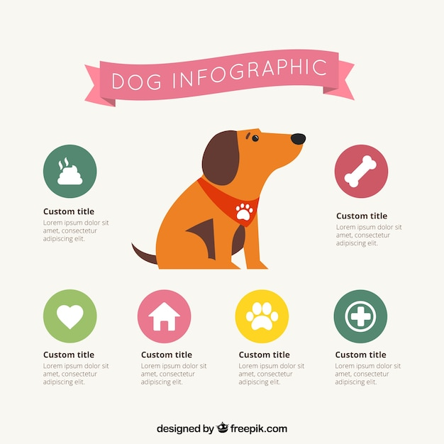 Dog infographic Vector | Free Download