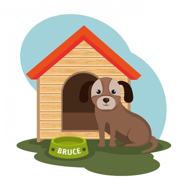 Dog pet shop illustration Free Vector