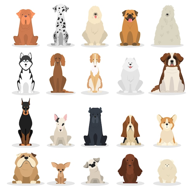 Dog set. collection of dogs of various breed Premium Vector