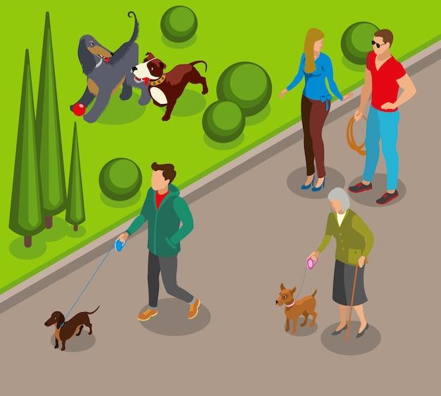 Dog walking isometric illustration Free Vector