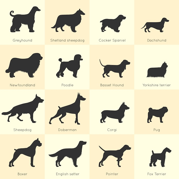 Dogs breed set Free Vector