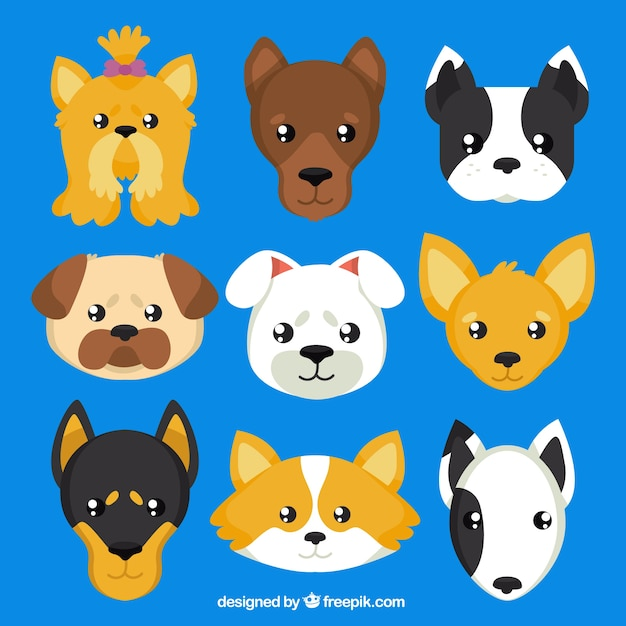 Avatar 2 Animals: Dogs Breeds Avatars Vector