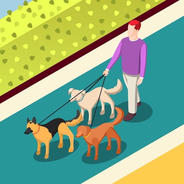 Dogs walking isometric illustration Free Vector
