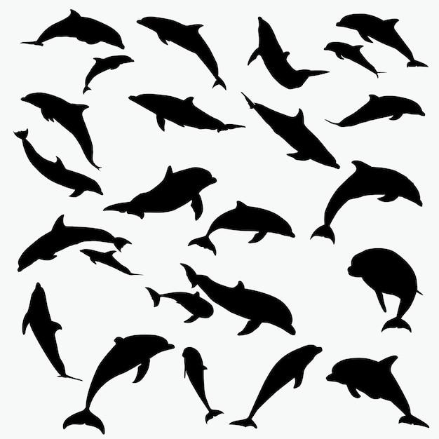 dolphin silhouettes vector premium download