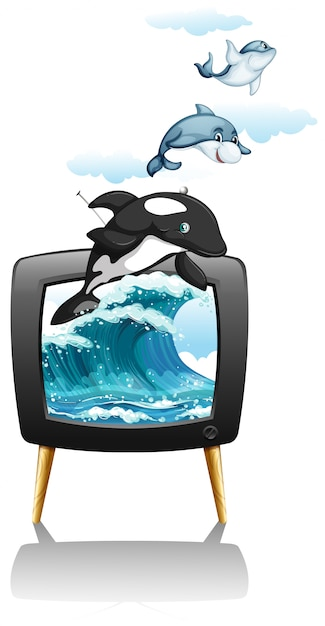 Dolphines swimming and jumping on tv Free Vector