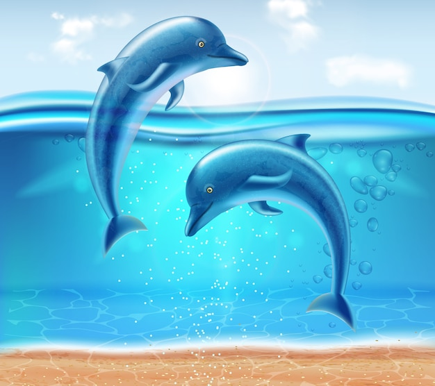 Dolphins jumping Premium Vector