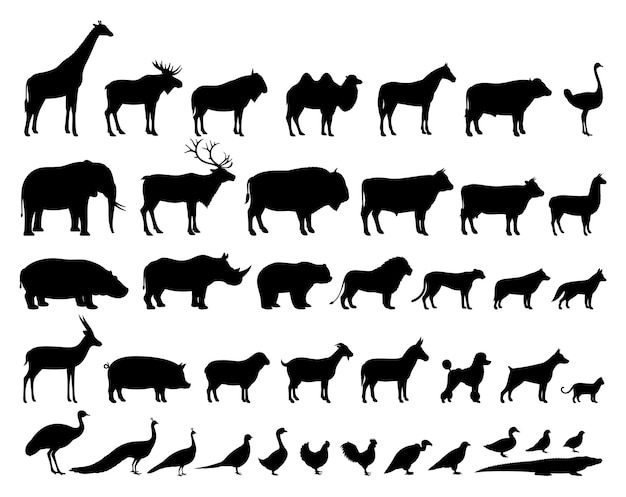 家畜と野生動物のシルエットコレクション Premiumベクター