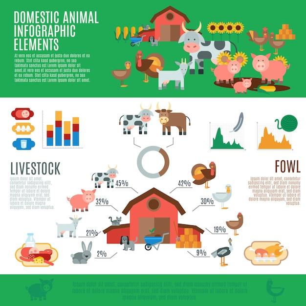 Domestic animals infographics Free Vector