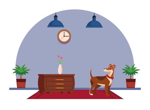 Domestic animals and pet icon Premium Vector